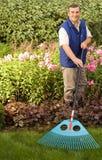 Man raking garden Royalty Free Stock Images