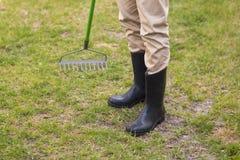 Man raking in his garden Royalty Free Stock Photos