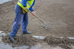 Man Raking Weeds from top soil Stock Image