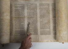 Man reading from an ancient torah scroll. Top view Stock Image