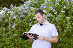 Man reading the Bible. Royalty Free Stock Photography