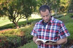 Man reading a book. Man reading a bible outside in a park Royalty Free Stock Photos