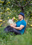 Man reading a book in the orchard. Man reading a book under an apple tree in the orchard Royalty Free Stock Images
