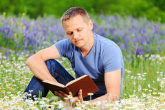 A man reads a book in the field. Stock Photography
