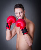 Man ready for fight portrait Royalty Free Stock Photography