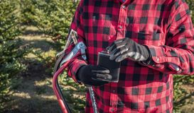 Man in red plaid shirt holding saw and flask at christmas tree f. Man in red buffalo plaid shirt holding saws and flask of liquor at christmas tree lot Stock Photography