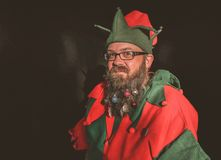 Man in Red and Green Elf Costume Royalty Free Stock Photo