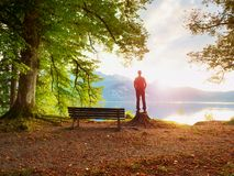 Man in red jacket and black trousers stand on tree stump. Empty wooden bench at mountain lake. royalty free stock image