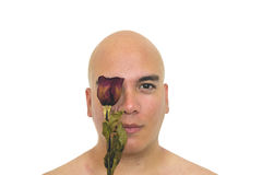Man with a red rose on his eye. Closeup of a man with an old red rose on his eye  on a white background Stock Images