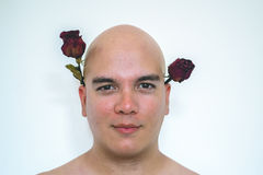 A man with red roses on his ears. Closeup of a man holding red roses with his ears,  on a white background Royalty Free Stock Photo