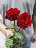 A man with red roses and valentine in the hands. Valentine day love beautiful Stock Images