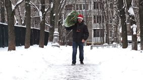 Man in a red Santa hat carries a Christmas tree packed in a grid just bought at the Christmas market. Slow motion. Slow motion shot of a middle aged man wearing stock video footage