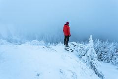 Man in red on top of snowy mountain admiring the landscape stock photography