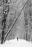Man in red walking in forest on winter. With dog stock images