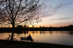 Man relaxing on a bench under a tree with beautiful sunset in ba Stock Image