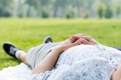 Man relaxing in the park Royalty Free Stock Photo