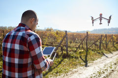 Man remote control flying drone. Over vineyard Stock Images