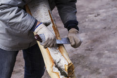 Man removes the bark Stock Image