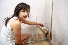 A girl removing Mold fungus without respirator mask. A Man removing Mold fungus with respirator royalty free stock photography