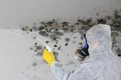 Man removing Mold fungus with respirator mask. A Man removing Mold fungus with respirator mask stock images
