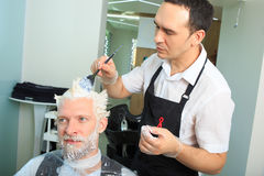 Man repaint the hair in a beauty salon Royalty Free Stock Images