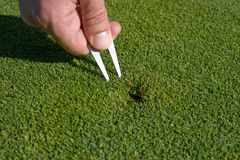 Man Repairs Divot on Golf Green - Horizontal Royalty Free Stock Photography