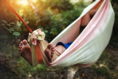 Man resting in a hammock stock photo