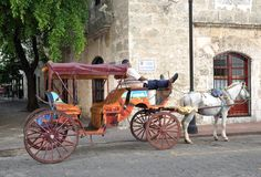 Man resting in his horse carriage Stock Photos