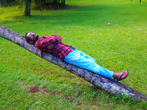 Man resting over inclined tree Stock Photos