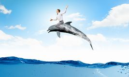 Man ride dolphin Stock Photos