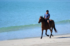 Man ride horse. MATAI BAY, NZ - JAN 29:Man ride horse in Matai bay on Jan 29 2014. It's a famous travel destination in northland New Zealand stock images