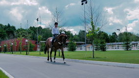 The man ride on the horse on the road stock video footage