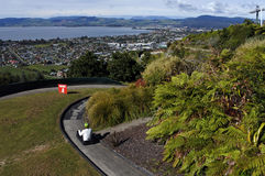 Man ride on Skyline Rotorua Luge Royalty Free Stock Photo