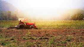 Man ride  tractor. In the sunset time Stock Photography