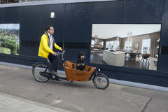 Man ride on a tricycle with his dog in town. Alternative ecologi Stock Images