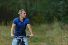 Man rides on bicycle in pine forest, sport leisure Stock Photography