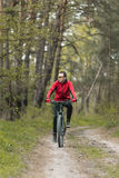 Man Rides a Bike in the Forest Royalty Free Stock Photos