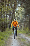 Man Rides a Bike in the Forest Stock Images