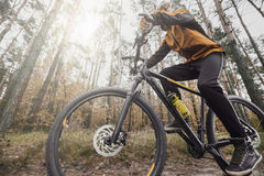 Man Rides a Bike in the Forest Stock Photography
