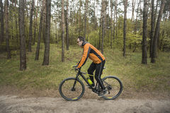 Man Rides a Bike in the Forest Stock Photos