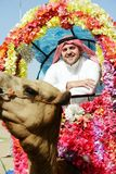Man rides decorated camel Stock Image