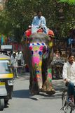 Man rides traditionally decorated elephant by the street near Amber fort in Jaipur, India. royalty free stock photos