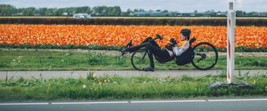 Man ridiing a recumbent bicycle, tulip background near Keukenhof