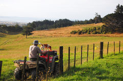 Man riding atv with dog alone fence rural area Royalty Free Stock Images