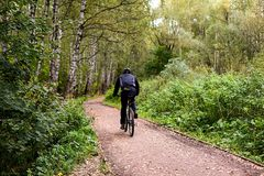 Bicyclist in the park. Outdoor, sport. A man riding a bicycle. Bike path in the park or wood. Back of a Bicyclist. Autumn, daytime royalty free stock images