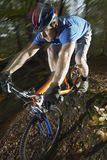 Man Riding Bicycle Through Forest royalty free stock photos
