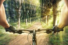 Man riding on a bicycle in forest Royalty Free Stock Photos