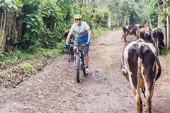 Man, riding bicycle in the highlands of Guatemala. Chimaltenango, Guatemala - December 7, 2016: Cyclist is traveling thru Guatemalan highlands, sharing dirt Royalty Free Stock Photography