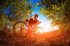 Man riding a bicycle in nature. On sunset stock image