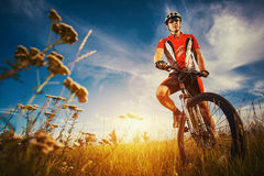 Man is riding bicycle outside in the field. Happy Young man is riding bicycle outside. Healthy Lifestyle Royalty Free Stock Image